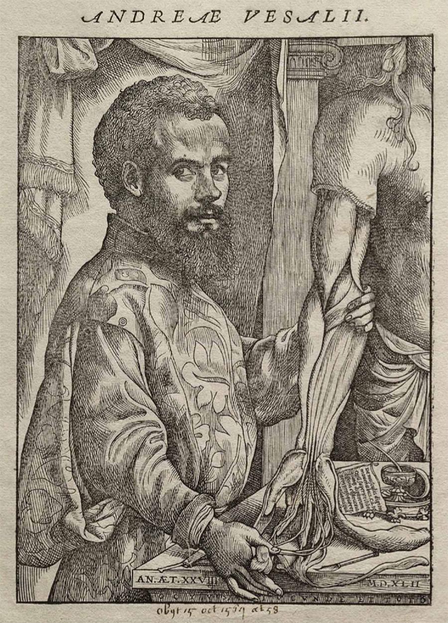 Portret van Andreas Vesalius in zijn boek 'De Humani Corporis Fabrica'. Het portret werd wellicht gemaakt door Johan Stefan van Kalkar. Bron: https://commons.wikimedia.org/wiki/File:Vesalius_Fabrica_portrait.jpg