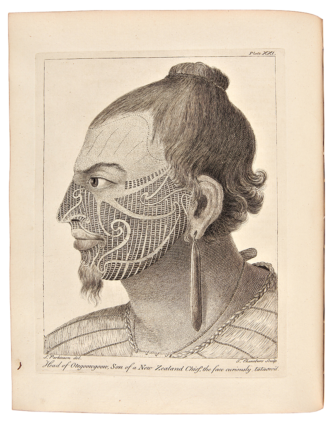 "Head of Otegoongoon, afbeelding uit ""Voyage to the South Seas"" (1773) van Sydney Parkinson"