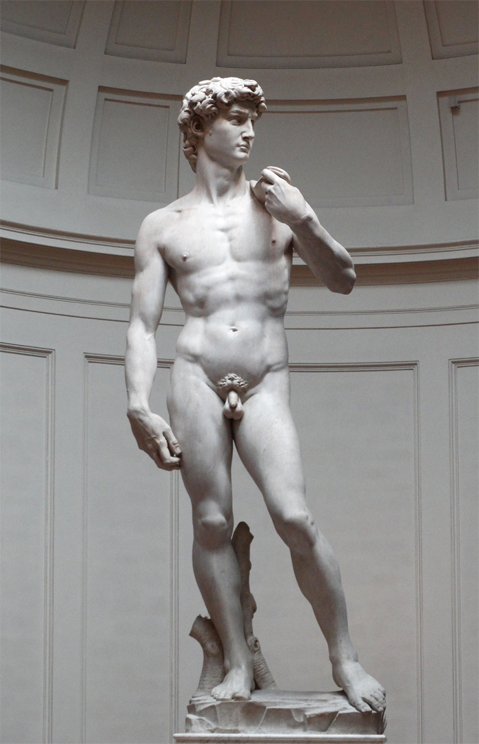 David door Michelangelo (ca. 1501 - 1504) in de Galleria dell'Accademia, Firenze. Foto: © Bruno De Lille